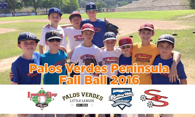 fall-ball-banner
